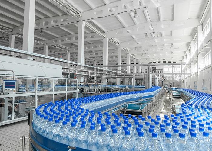 Planta botellas de plástico