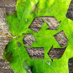 Taller: Plàstic reciclat en contacte amb aliments