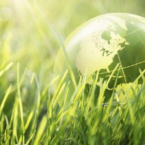 La cadena de valor dels plàstics fa les seves aportacions al Pla d'Acció d'Economia Circular del MITECO
